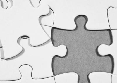 Distribuerbare undersøkelser – Veiledning til det pedagogiske personale